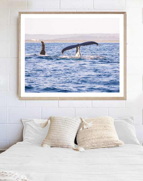 Photograph of Whales in frame above bed